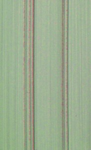 Paint Grade - Tarragon