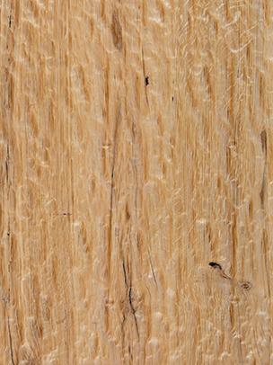 Smooth Bark Rustic Oak