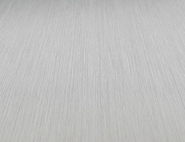 Monaco-DM-Silver-Brushed-Matt-AR